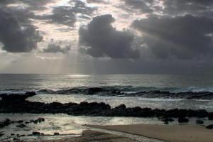 Ballito Seaside Landscape, courtesy of www.roomsforafrica.com