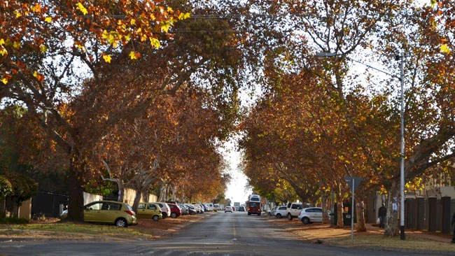 Leafy suburb in Hatfield
