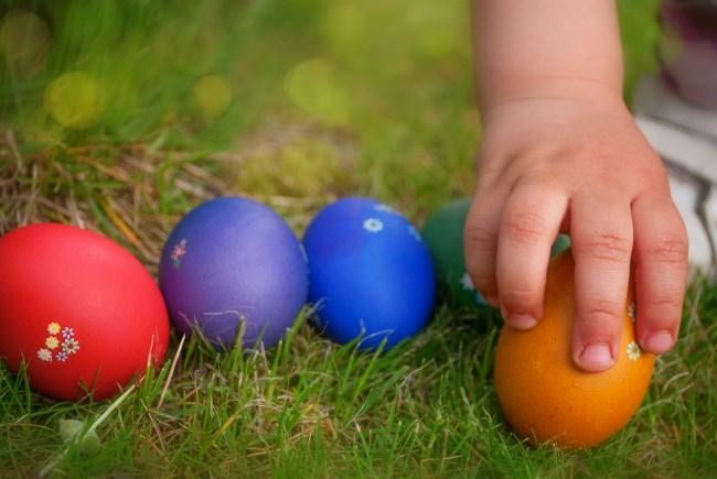 children searching for easter egg treats in the garden