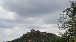 Lonehill Koppie, Gauteng