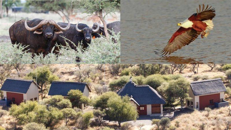 Image Number 7 for Shona Langa Nature Estate