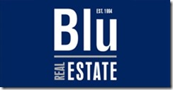 Blu Real Estate