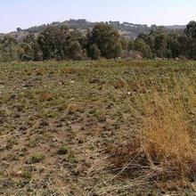 49700 m² land for sale in Glenvista   K89136