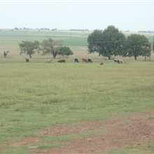 85.2 ha LAND AREA farm for sale in Fochville | S907164