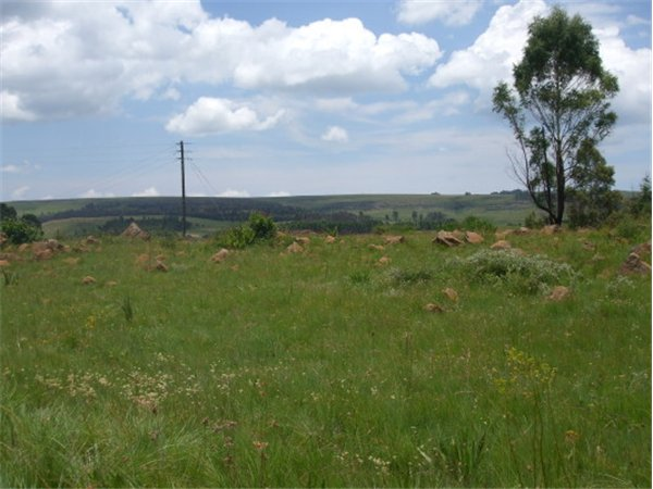 991 m² land available in Dullstroom photo number 0