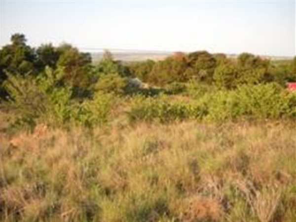 3 ha Land available in Tiegerpoort photo number 1