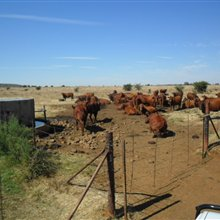 Agricultural listing for sale in Fochville | S976547