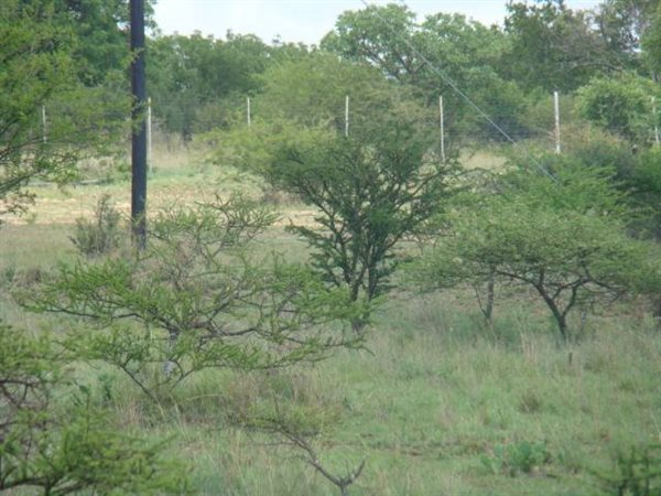 3.4 ha Land available in Polokwane Central photo number 1