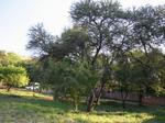 844 m² land available in Montana Park photo number 3