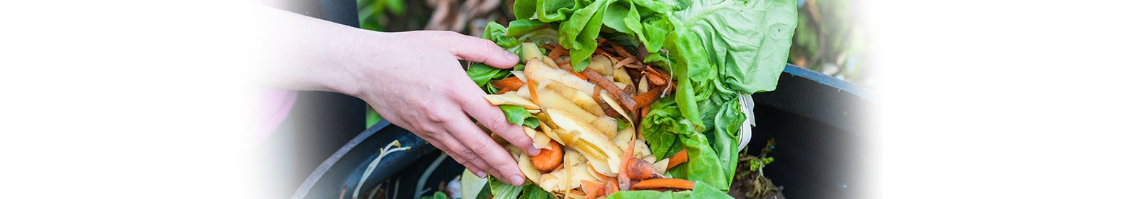 DIY Compost – what every garden should have
