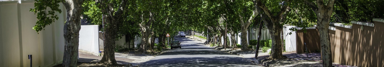 Property guide to Parktown North