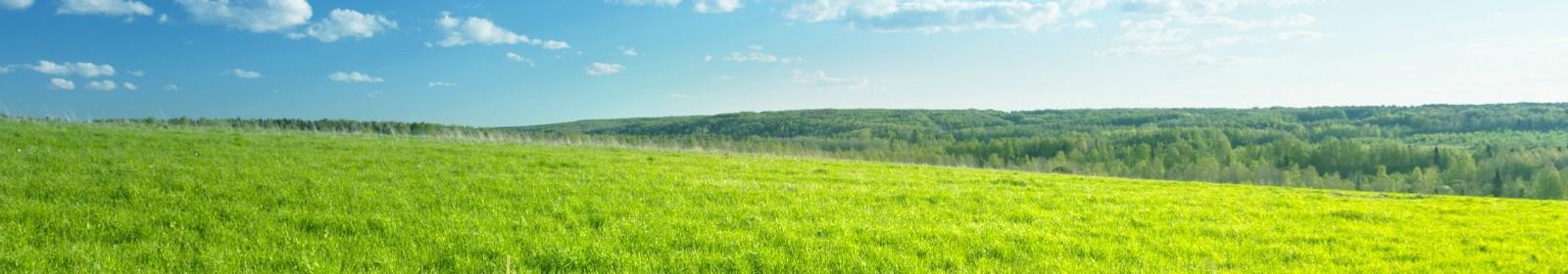 Land expropriation Amendment hearings
