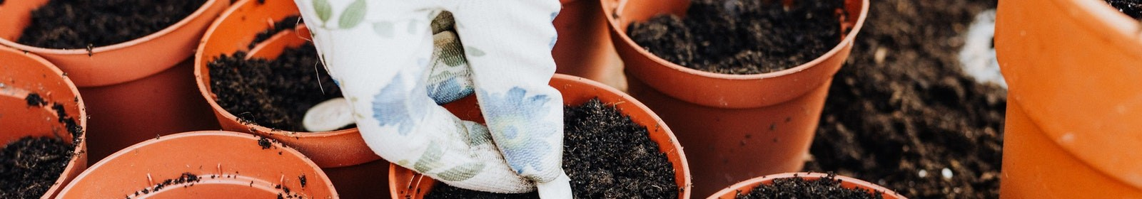 How to make a compost heap at home