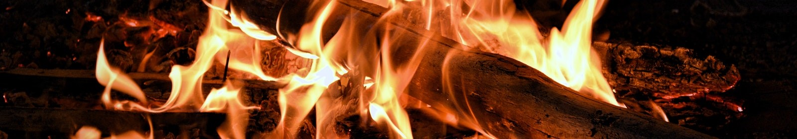 The Best Braai Wood for a Perfect Flame