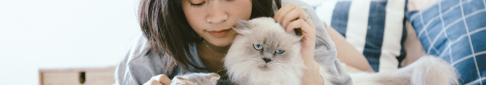 What to do when a tenant asks for pets