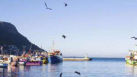 Image of False Bay