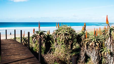 Image of Jeffreys Bay to Tsitsikamma