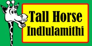 Tall Horse Rentals
