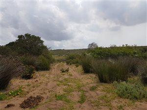 104 ha Farm in Jongensfontein thumb