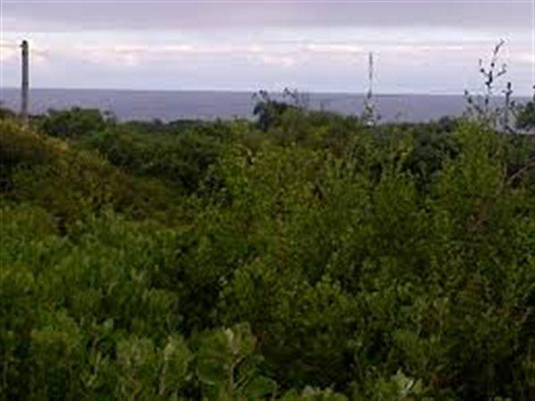 Private Property Seaview Port Elizabeth