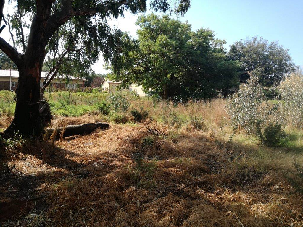 1191 m land available in koster