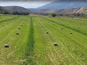 333 ha Farm in Ladismith thumb