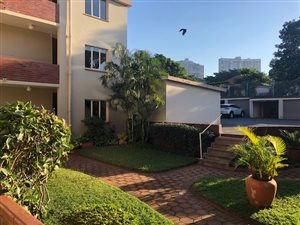 Glenwood, Durban Central and CBD: Property and houses to rent