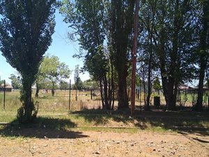 2330 m² Land available in Memel photo